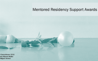 Mentored Residency Support Awards