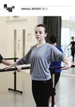 Dance Ireland Activity Report 2015